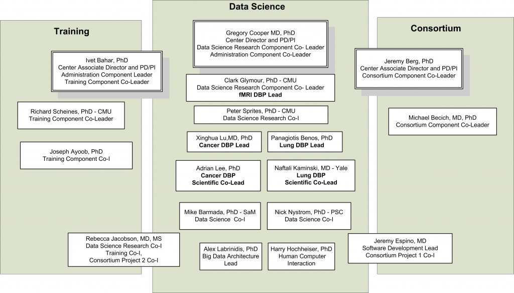 Org Chart v2